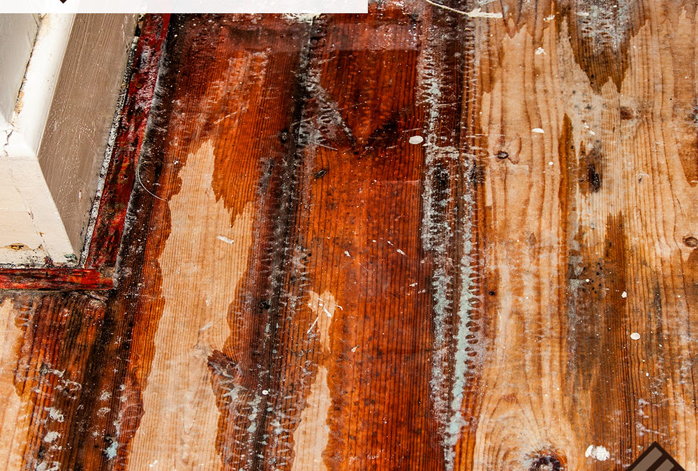 How To Save Your Water-Damaged Wood Floors