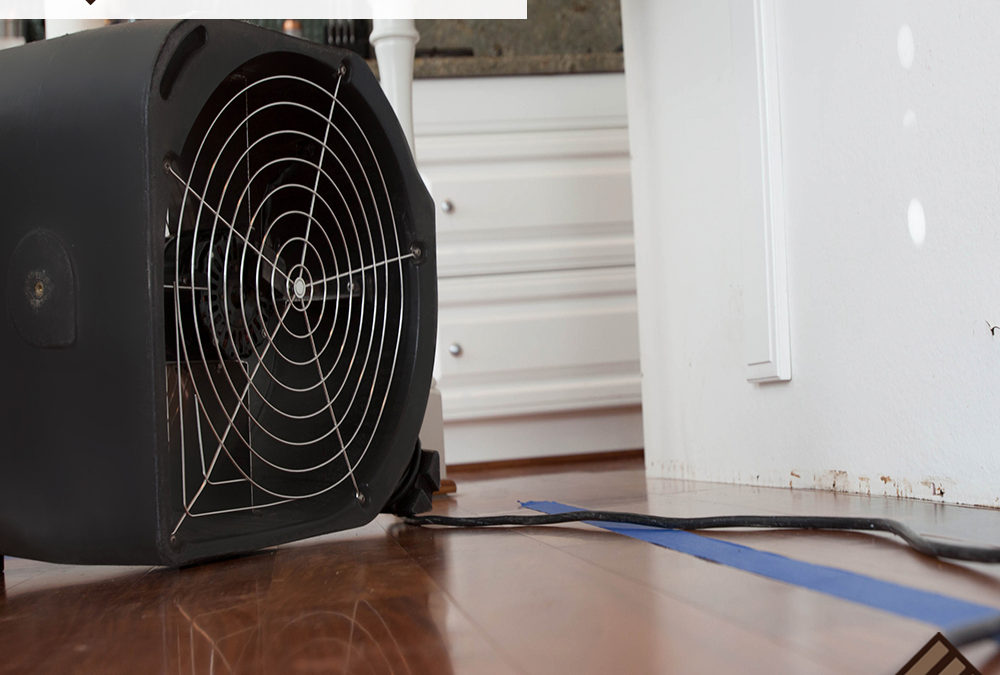 How to Repair Water Damage to Plywood on a Kitchen Floor
