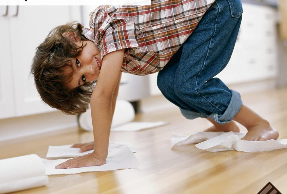 4 Reasons Hardwood Floor Cleaning is So Important