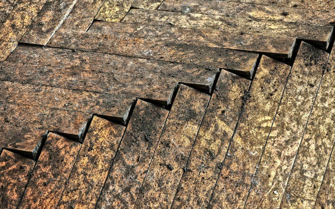 5 Steps for Repairing a Water Damaged Hardwood Floor